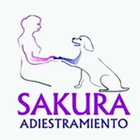 Sakura Adiestramiento Canino